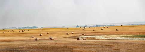 Prairie Farm Scene