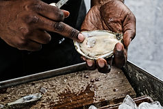 Oysters_Jai Williams_5.JPG