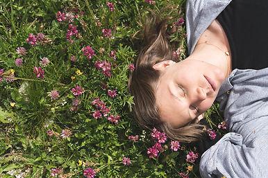 portrait of helianth, lying on flowers