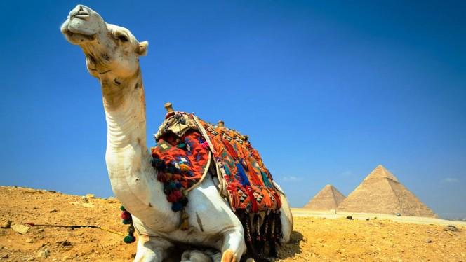 Piramides  del giza