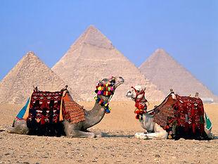 Disfruta de una Excusrion desde Alejandria a El Cairo por un dia y visita las piramides,el Museo Egipcio y pasa un tiempo estupendo con Egipto Excursiones