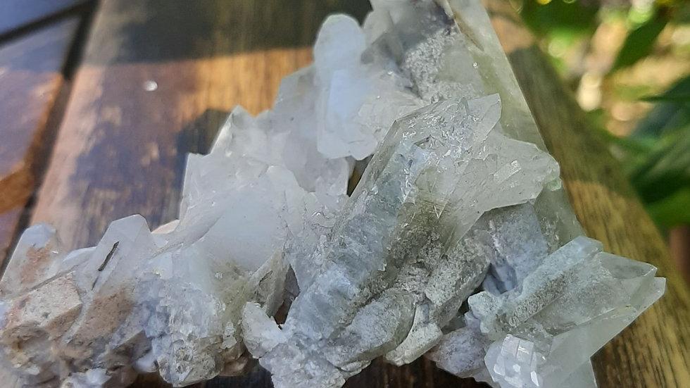 Dendritic Quartz Cluster (Shamanic quartz)