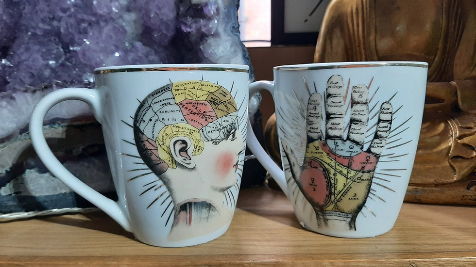 Ceramic Cups Phrenology & Palmistry