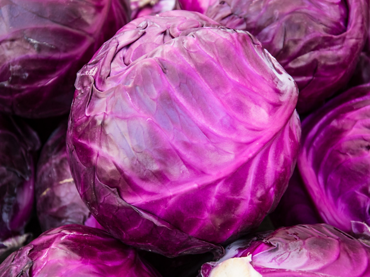 Red cabbage $4.00 each