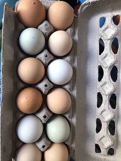 Mix color farm eggs $6.00 dozen