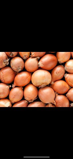 Small onions $4.00 lb