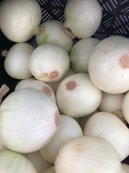 sweet white onions $3.00lb