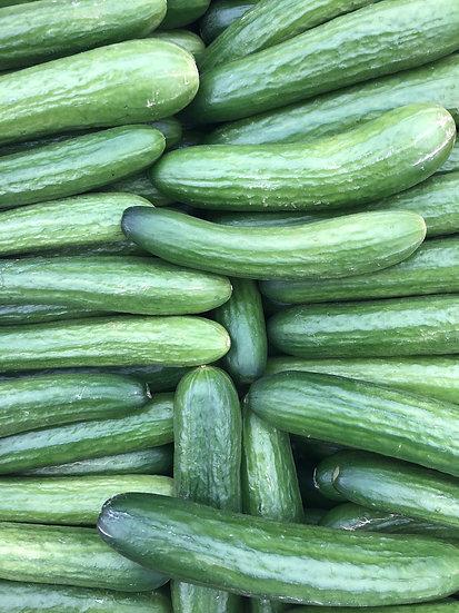 seedless cucumbers $5.00 pt