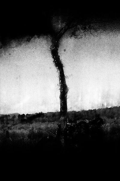 Elie Monferier _ Sang Noir