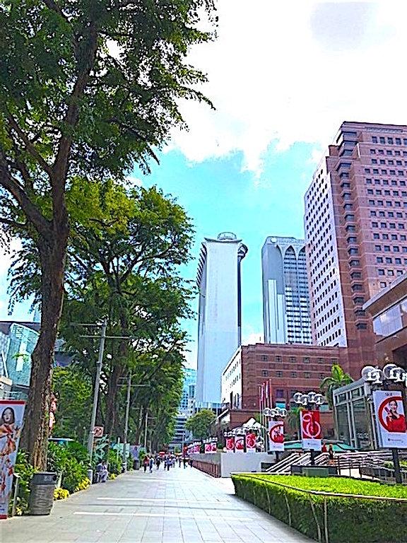 OrchardRdSingapore.jpg