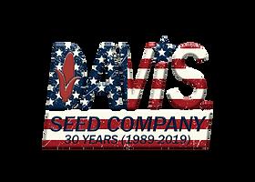 DSC AmericanFlag 30 year Blue Star Bevel