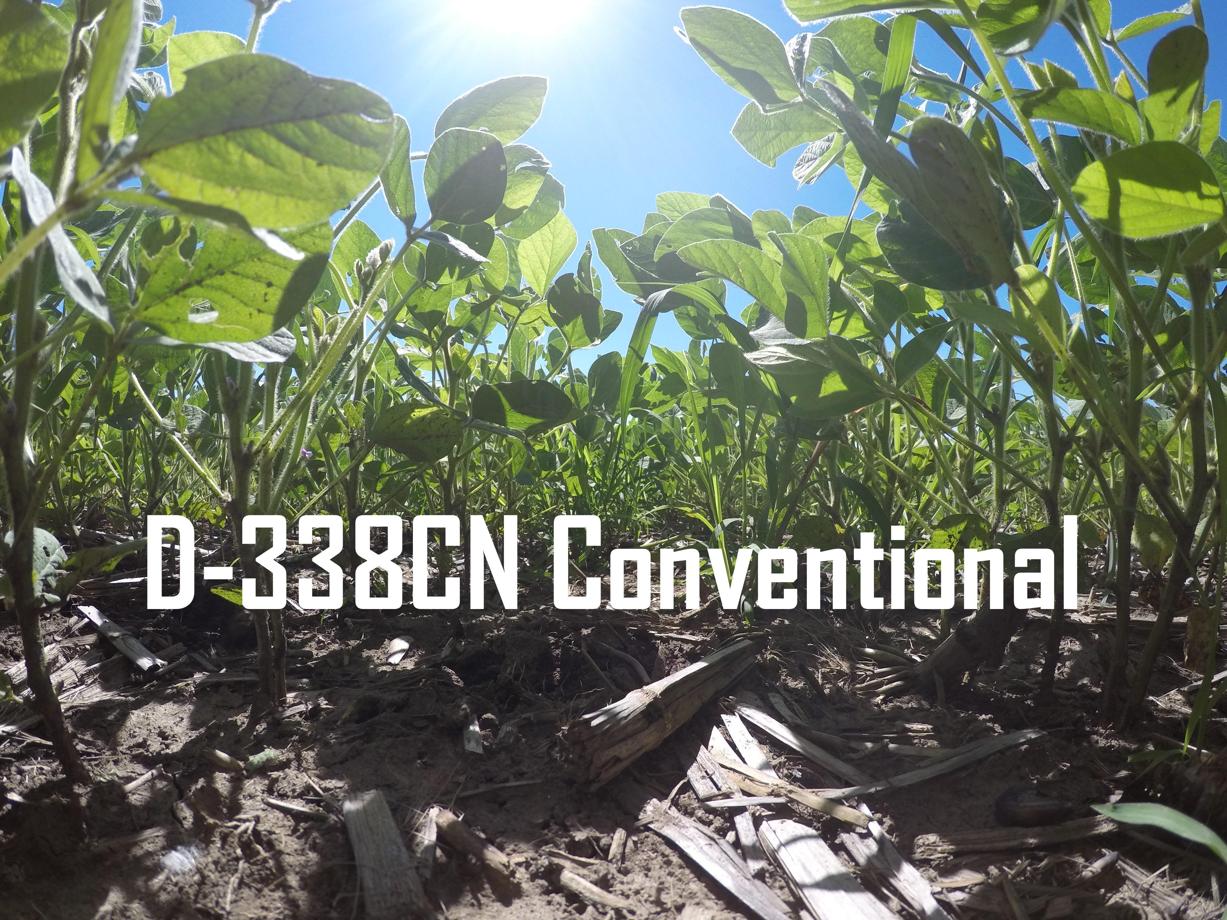 D-338cn