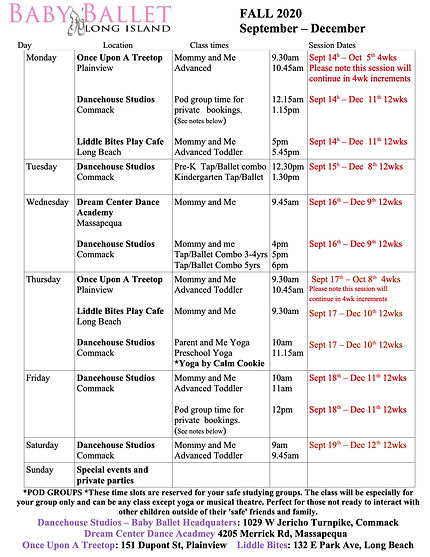 class schedule fall 2020.jpg