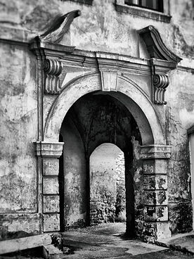 pexels-pixabay-276092_edited.jpg