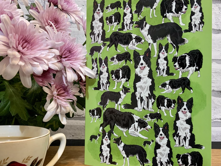 Border Collie Greetings Card and Matching Fudge Gift Box.