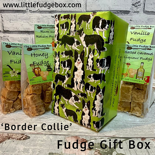 border collie, gift wrap, present, wrapping paper, birthday, welsh fudge, wales, original, unique, animal, faithful hound,