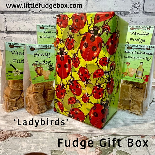 ladybird, lady bug, beetle, insect, summer, red, spotted, polka dot, ladybug, scarlet bug, fudge gift box bag