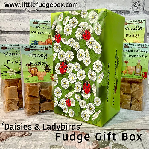 Specially designed hand drawn box of fudge illustrated with white daisies and red ladybirds. From The Little Fudge Box.