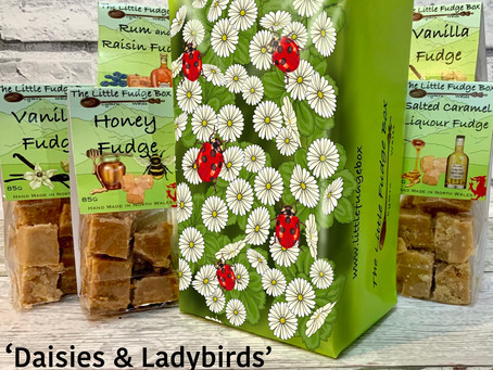Daisies and Ladybirds