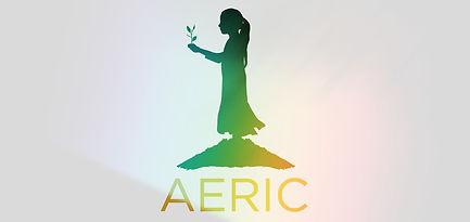 AERICorangeSTRIP_edited.jpg