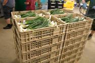 Gemüse Bigler 019.JPG