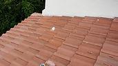Tile Repair photo 3