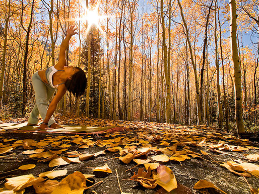 Yoga in autunno, lo yoga delle quattro erre