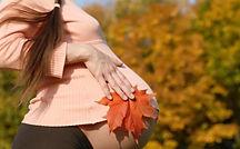 2_incinta-autunno-656x492-1280x720.jpeg
