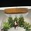 Thumbnail: Buz Pateni Yapan Çift Abajur Teraryum