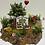 Thumbnail: Öğretmenler gününe özel ağaç dilim teraryum