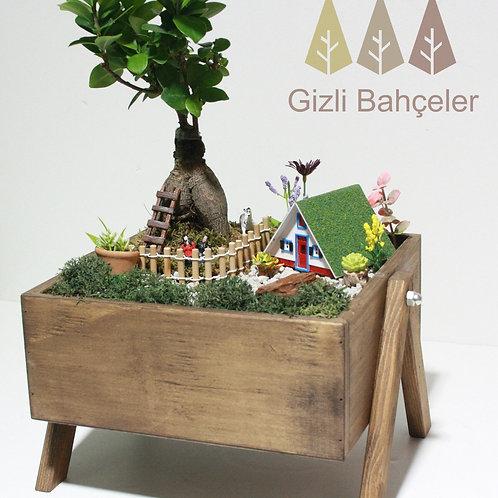 Bonsai Ahşap Tasarım