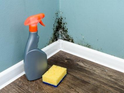 Como limpar o bolor nas paredes e melhorar a respiração.