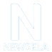 Newsela Icon 3.png