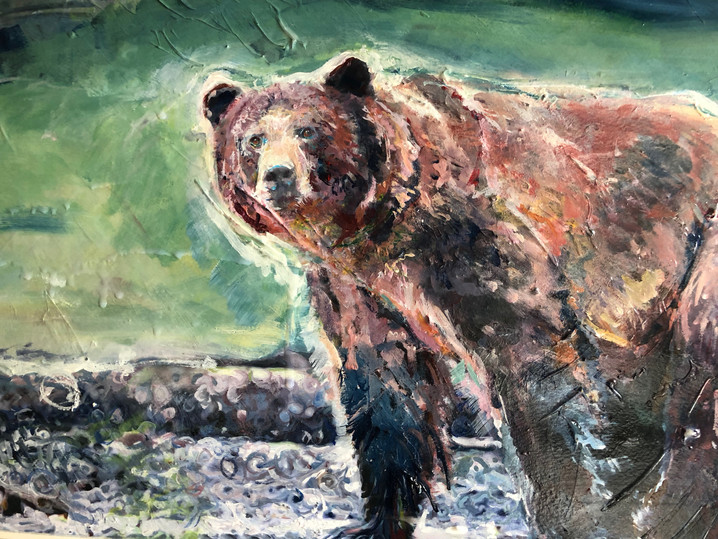 Khutzeymateen Grizzly