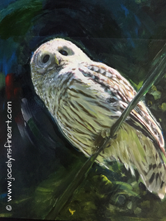Adams Barred Owl-sold