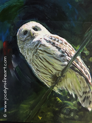 Adams Barred Owl-original sold
