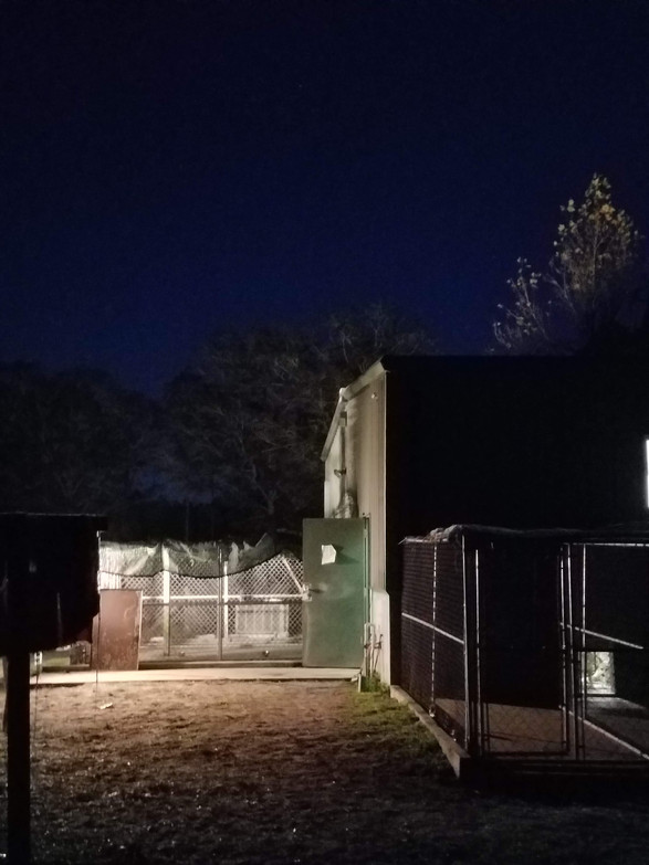 The kennel at night during the Holidays, Thanksgiving and Christmas. We're busy so we're there at all hours.