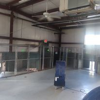 The back area of the kennel