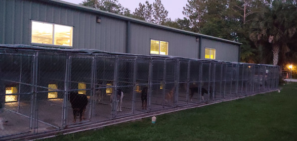 Again, kennel at twilight.