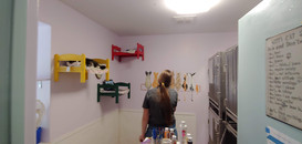 Our Rachel painting the cat mural in the cat room