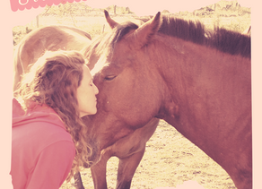 Las Enseñanzas de los caballos: Aprendiendo a Desacelerar