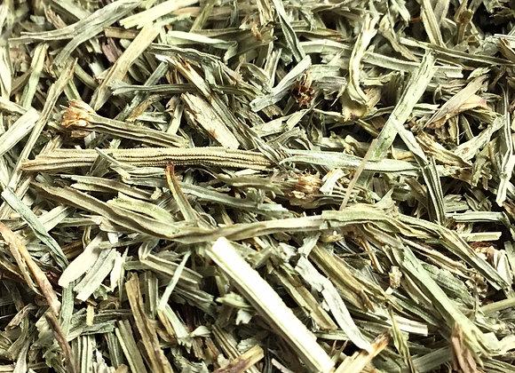 Horsetail Herb (Shavegrass) 1oz