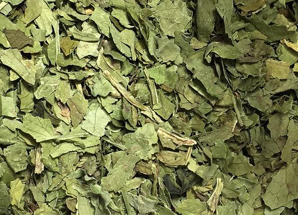 Cilantro Leaf 1oz