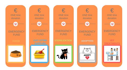 EMERGENCY fund.png