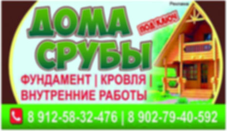 лого Дома и Срубы.jpg