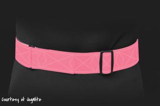 Wear a PT Belt