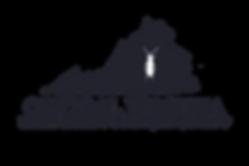 CVE and CS logo blue writing.png