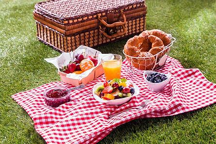 5_picnic.jpg