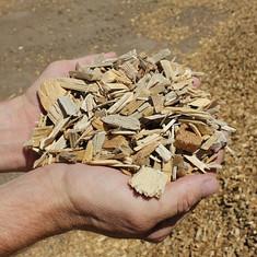 Wood Pulp