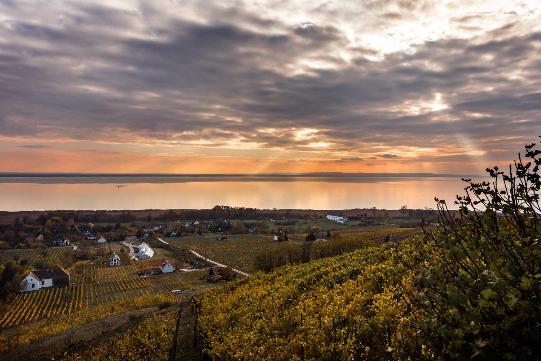 Balaton Panorama Wine Tour